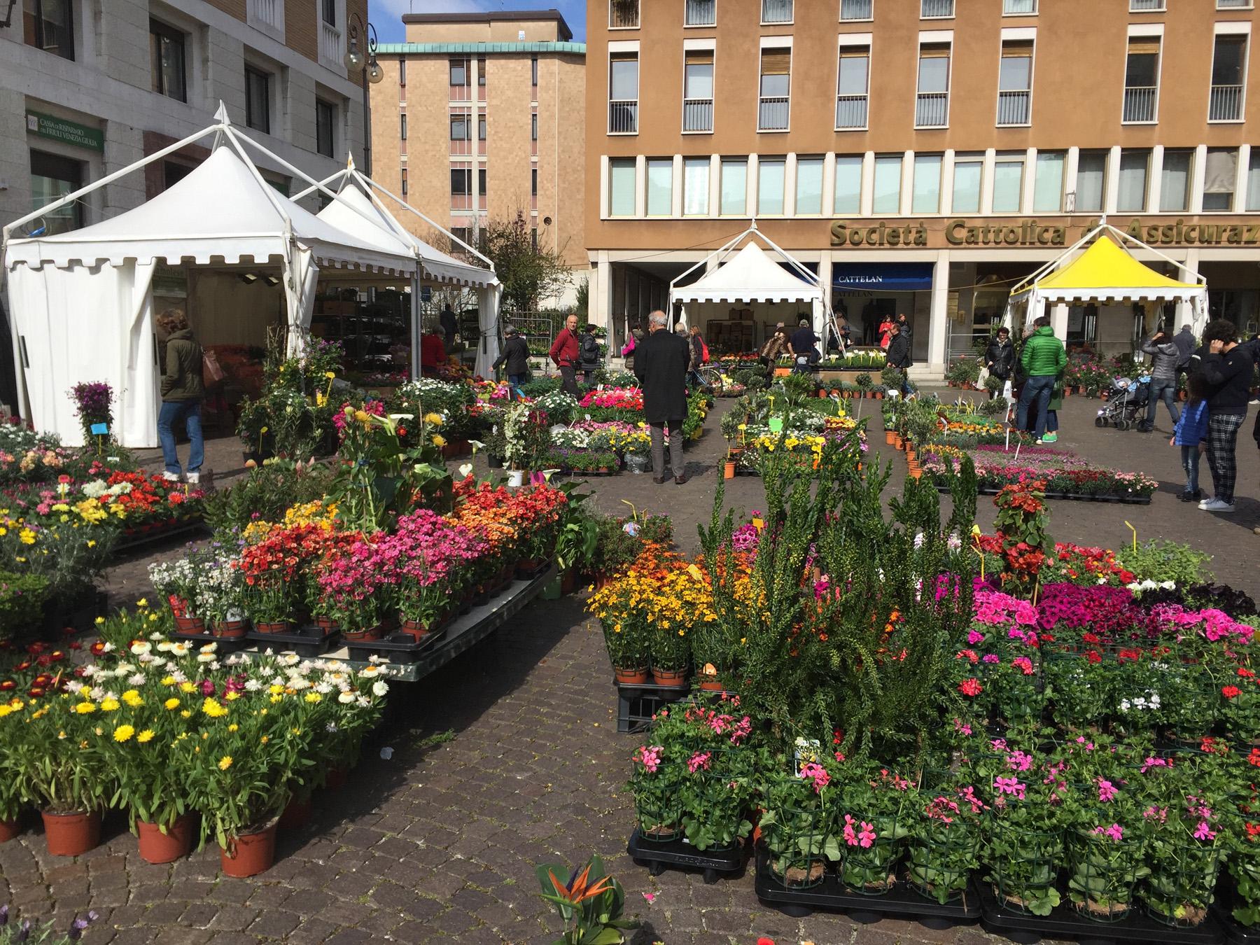 Udine si trasforma in un colorato e profumato giardino